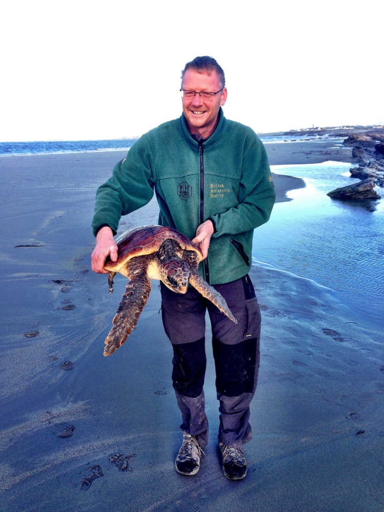 The IWDG's Simon Berrow pictured with the loggerhead turtle