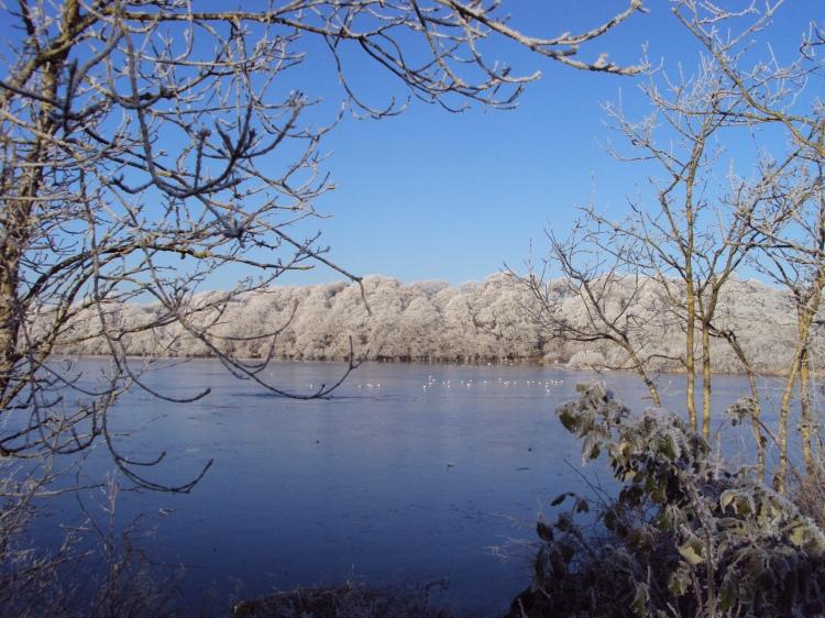 Ballyalla Lake near Ennis during the Big Freeze of December 2010