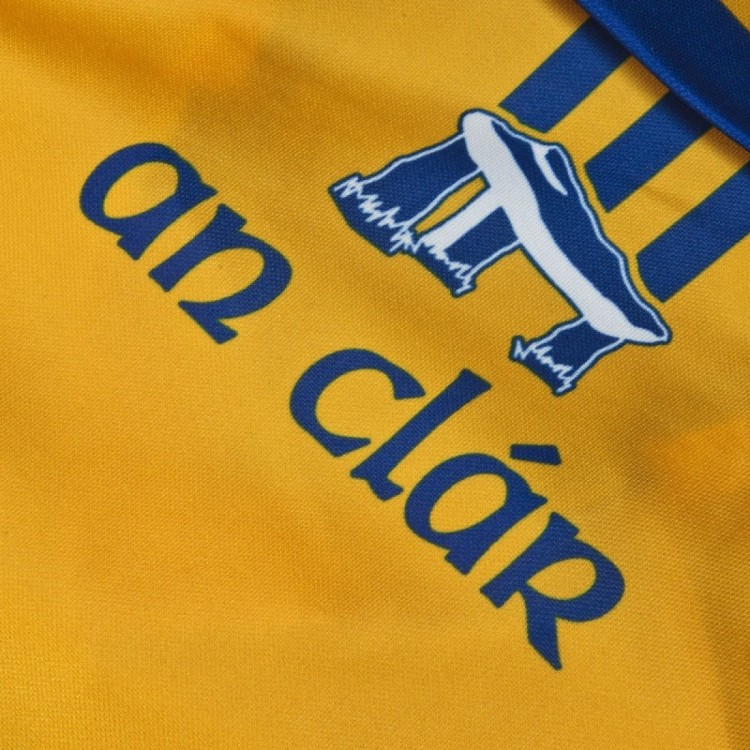clare hurling