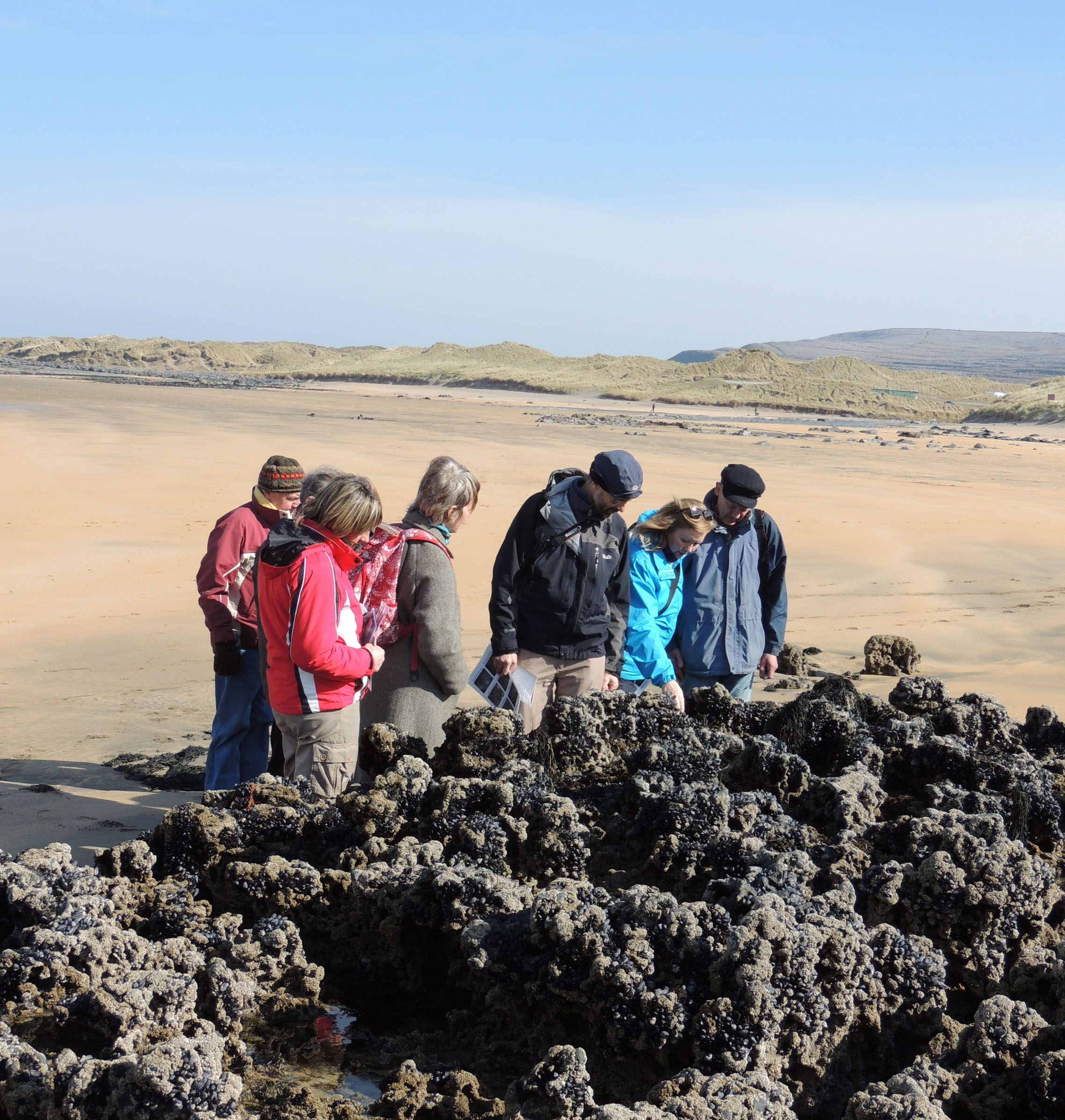Participants of a recent Geopark field trip at Fanore explore the impact of climate change on the Clare coastline