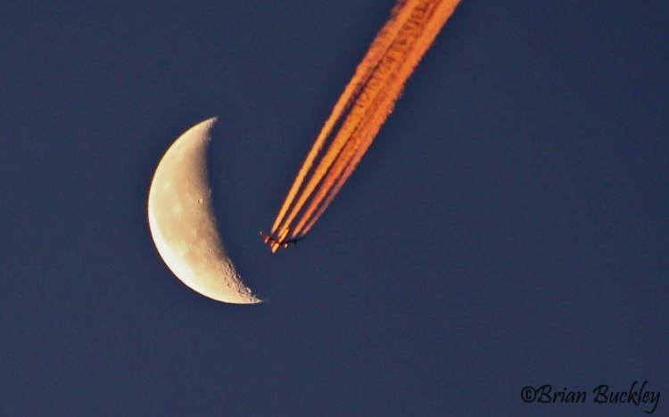 An airplane a photographed by Brian Buckley over Shannon