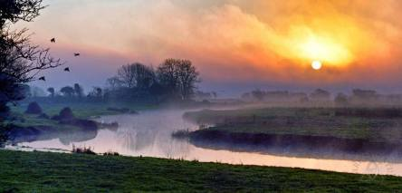 Dawn breaking through the fog on the River Fergus at Corofin Co. Clare. Photo Clare by Nature https://www.facebook.com/clarebynature