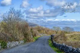 Mullaghmore Crossroads, Burren National Park, Co. Clare. Image by Clare By Nature https://www.facebook.com/clarebynature https://www.facebook.com/clarebynature