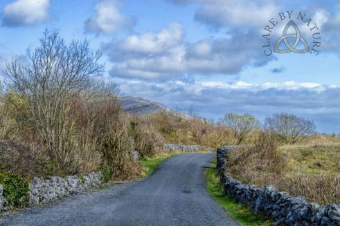 Mullaghmore Crossroads, Burren National Park, Co. Clare. Image by Clare By Nature https://www.facebook.com/clarebynature