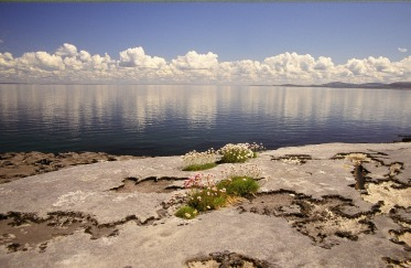 The Burren on the Galway Bay coastline by irishlandscapes.ie