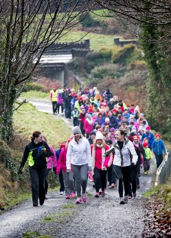 National Operation Transformation Walk Lissycasey