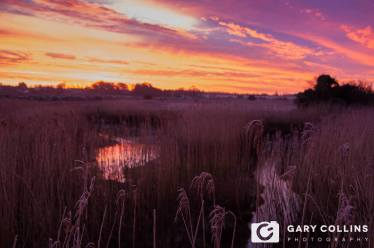 Sunrise along the River Fergus in Clarecastle, County Clare. Photo Gary Collins Photography
