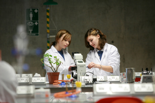 The Department of Life Sciences at the University of Limerick are welcoming over 500 Leaving Certificate Biology students from all over Munster into their state-of-the-art laboratories