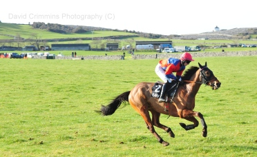 Bellharbour Point to Point. Photo David Crimmins