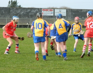 Clare Minor Camogie 1