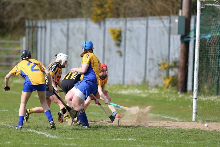 Aoife Griffin and Denise Lynch in action for Clare. Picture - Aidan Ryan