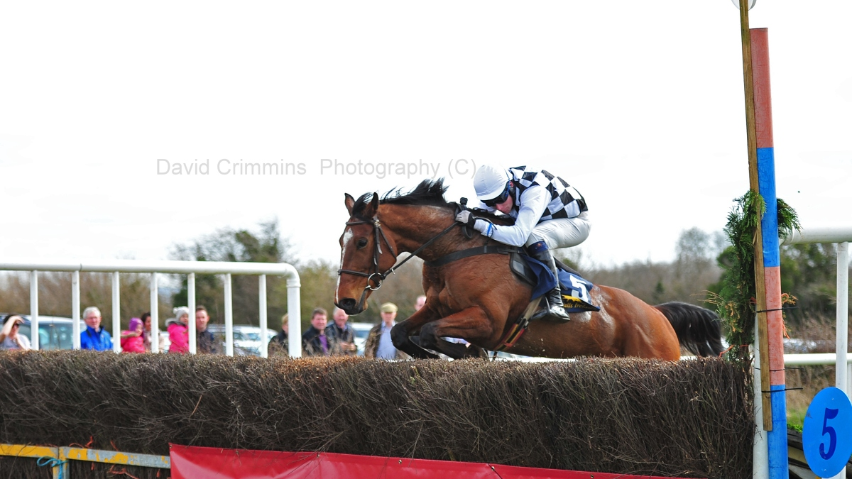 GALLERY Quakerstown Point to Point