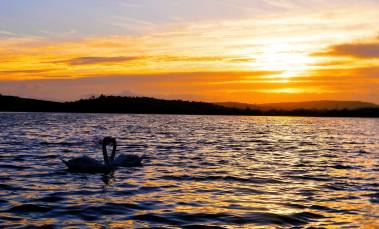 Ballyalla Lake. Pic Sarah Garry